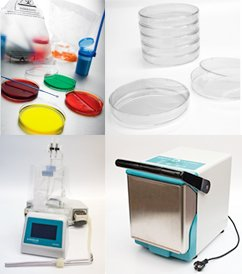 Buy $1,000 of Corning Gosselin participating