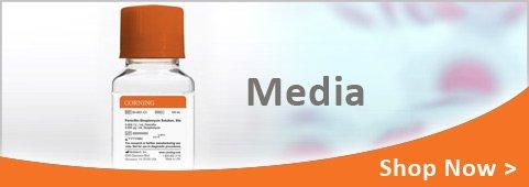 corning media banner